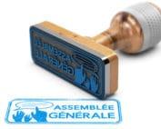 Nomination illégale d'un Commissaire aux comptes