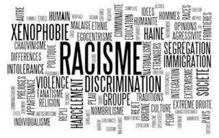 Propos racistes