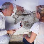 L'obligation d'investigation de l'agent immobilier